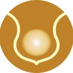 logo_icon copy